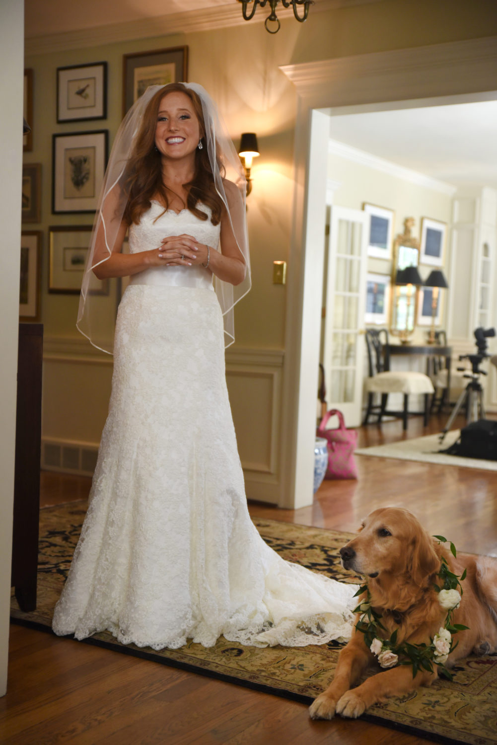 Bride and decorated wedding dog