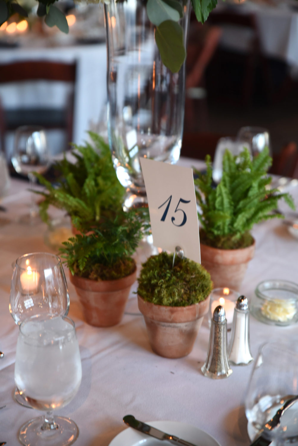 potted greenery wedding decor